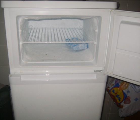 My Freezer